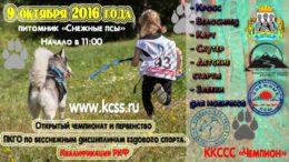 afisha_chempionat-goroda_mini
